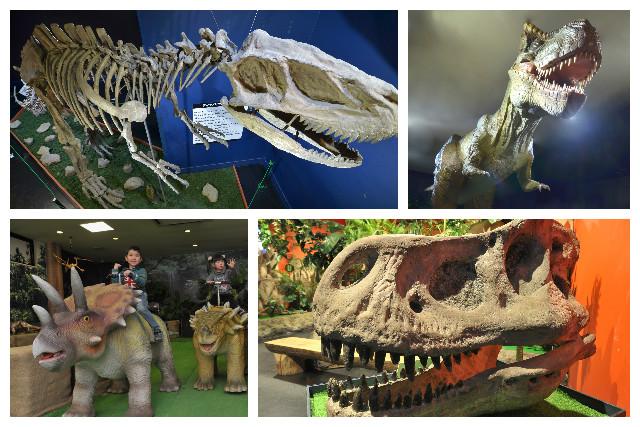 【300円割引】3D宇宙・恐竜館 入館クーポン