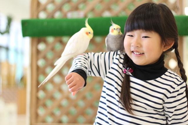 【特典付クーポン】Moff animal world BIGHOPガーデンモール印西店