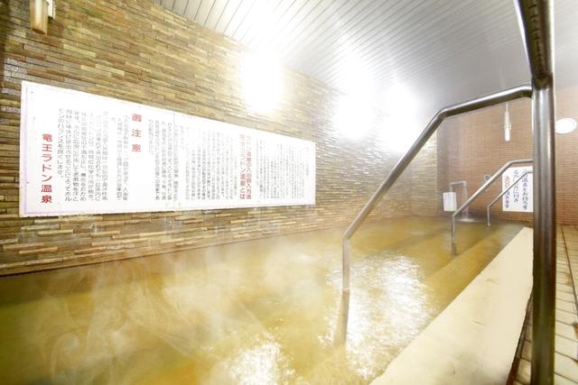 竜王ラドン温泉ホテル 湯ーとぴあ 電子前売りチケット(入館料+タオルセット)