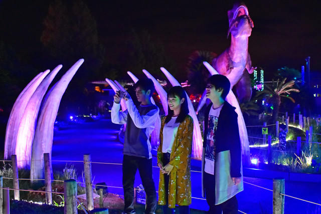 【最大200円割引】伊豆ぐらんぱる公園 グランイルミ クーポン (イルミネーション入場)
