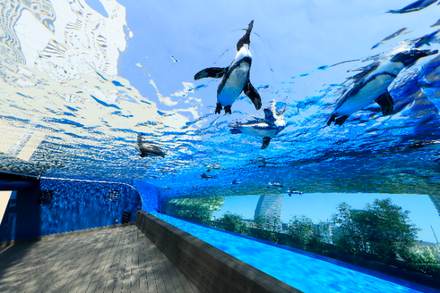 【入場日2日前の0時から取得可 優待などお持ちの方向け】サンシャイン水族館 WEB整理券