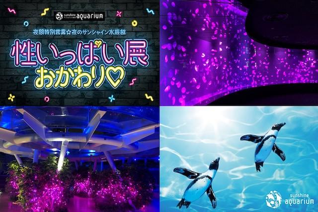【年間パスポートをお持ちの方向け】夜のサンシャイン水族館 性いっぱい展おかわり♡ WEB整理券