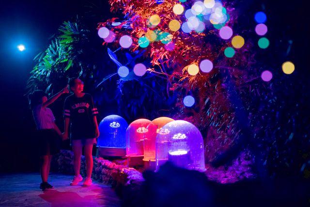 【最大170円割引】東南植物楽園 クーポン(入園)