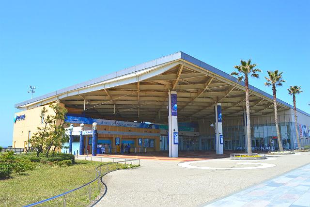 新江ノ島水族館 割引きチケット情報