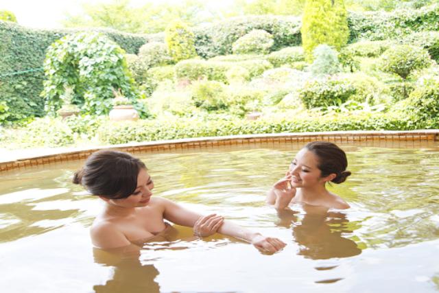 【平日100円割引】養老温泉ゆせんの里 ホテルなでしこ クーポン(みのり乃湯入浴)