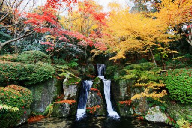 【100円割引】陽光美術館・日本庭園 慧洲園 クーポン(庭園+美術館)