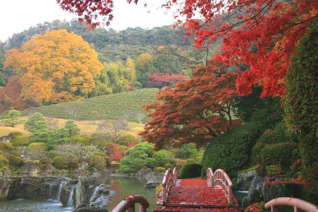 陽光美術館・日本庭園 慧洲園