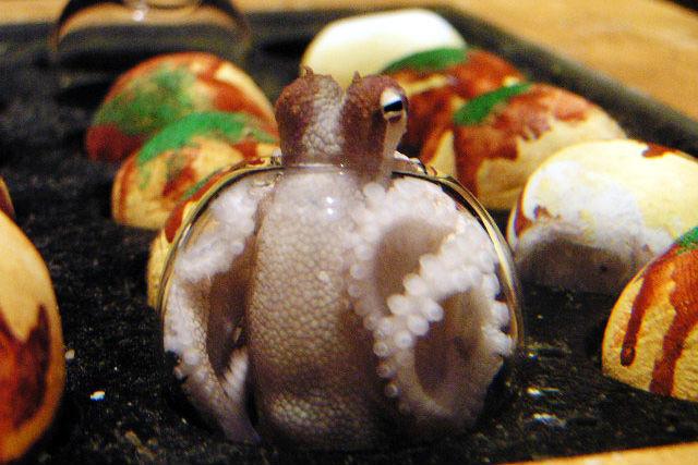 【最大200円引き】ヨコハマおもしろ水族館 クーポン(入館)