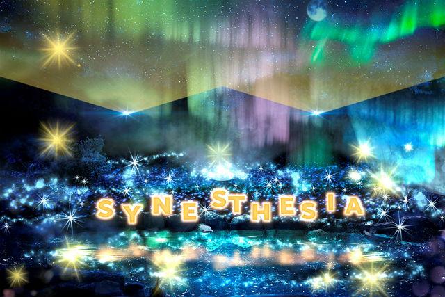 【クリスマス期間前売り・100円割引】京都イルミネーション シナスタジアヒルズ 入場クーポン