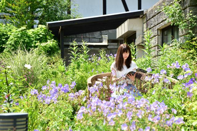 【最大100円割引】神戸 六甲山花さんぽ クーポン(3施設共通券)