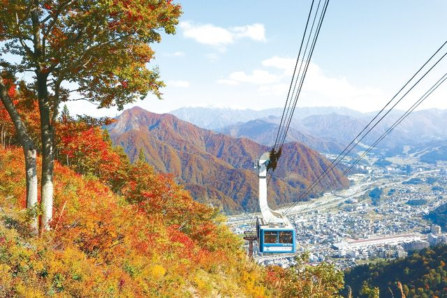 【翌日から利用可!】湯沢高原ロープウェイ 15%割引クーポン(往復乗車券)