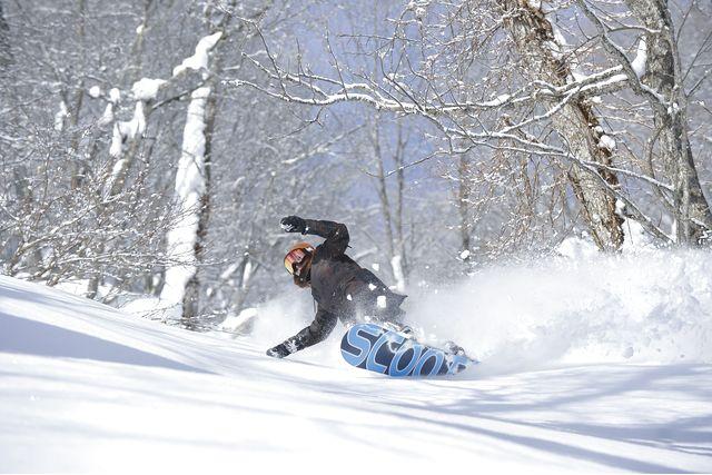 ※購入日の翌日以降利用可 八幡平リゾート パノラマ&下倉スキー場 リフト券(午後&ナイター券)