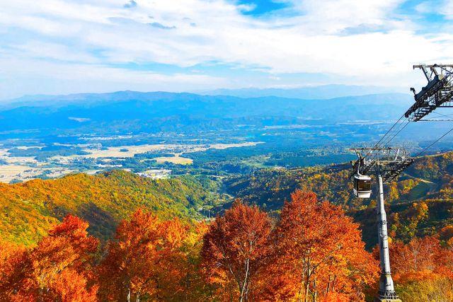 【最大300円割引】ロッテアライリゾート 観光ゴンドラ往復クーポン