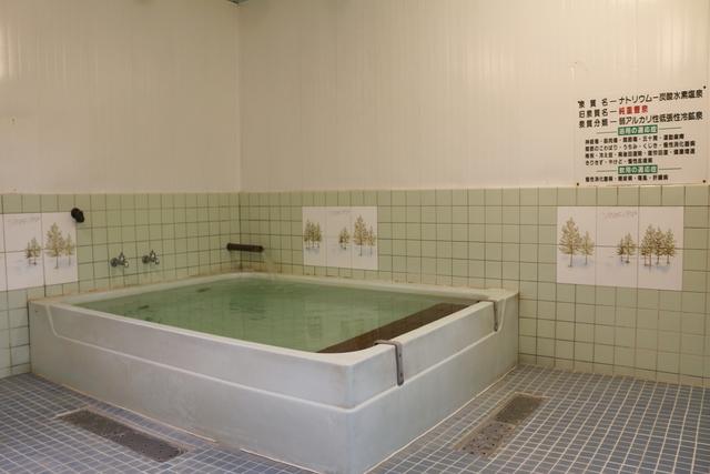 【最大50円割引】奥熊野温泉 女神の湯 入浴クーポン