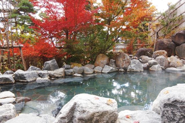 【平日・最大14%割引】のんびり温泉 入浴クーポン