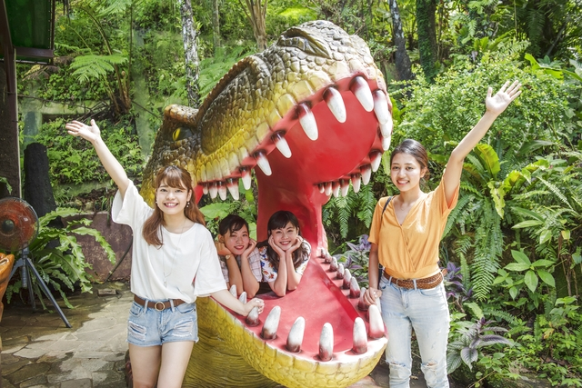 【最大20%割引】御菓子御殿 名護店 やんばる亜熱帯の森DINO恐竜PARK 入園クーポン