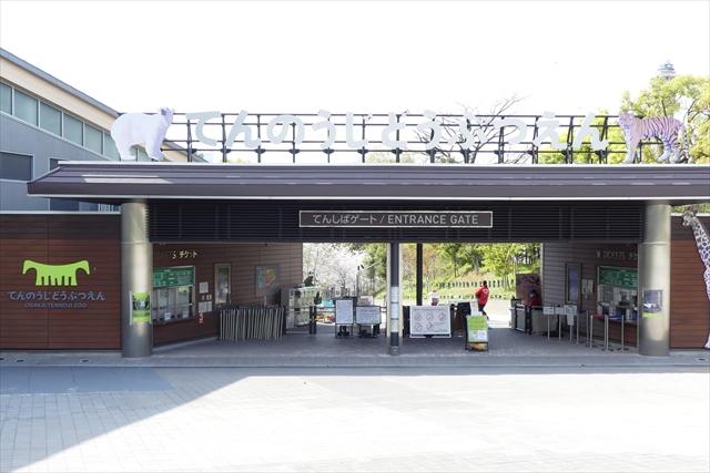 【土日祝】天王寺動物園  日時指定WEBチケット