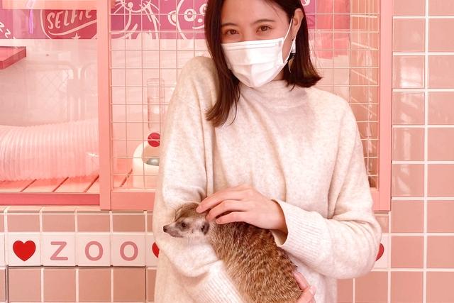 ワオチケ!【大人限定・41%割引】動物カフェ30分 クーポン 原宿かわいい動物園 予約不要 ※4月~
