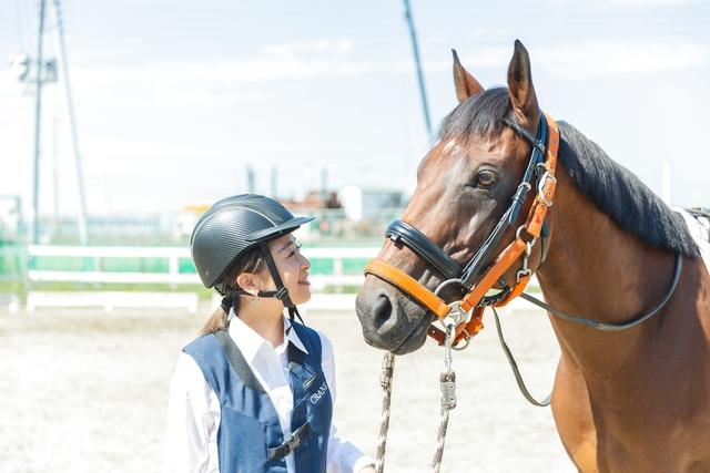 ワオチケ!【45%割引】乗馬クラブ クレイン竜ヶ崎_乗馬体験2回(初回から1ヶ月)※1人1枚・要予約