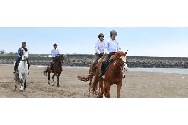 ワオチケ!【38%割引】クレイン金沢_乗馬体験2回(初回から1ヶ月)※1人1枚・要予約