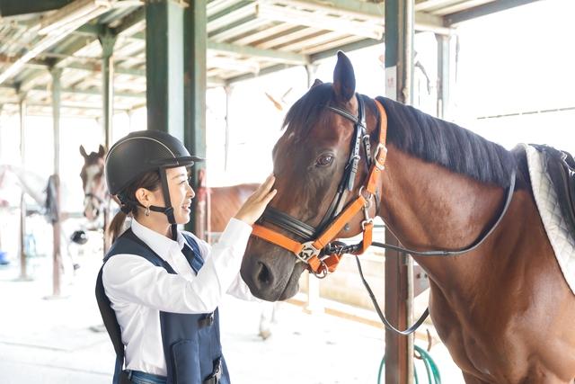ワオチケ!【51%割引】乗馬クラブ クレイン東広島_乗馬体験2回(初回から1ヶ月)※1人1枚・要予約