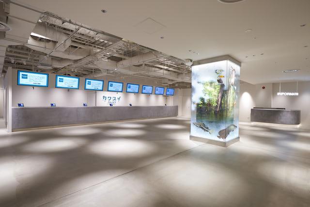 カワスイ 川崎⽔族館 日時指定入館チケット【障害者割引】