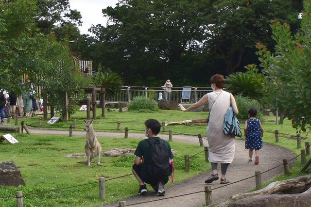 横浜市立金沢動物園 電子前売り入園チケット※毎週土曜日は、小・中・高校生は無料(要学生証等)