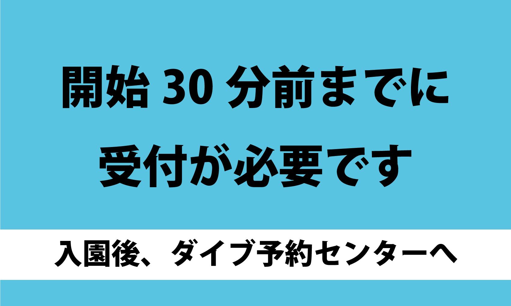 城崎マリンワールド 体験 Web 予約 (初めてのドルフィントレーナーツアー)